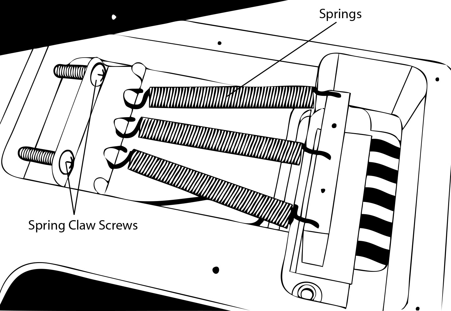 Caparison Tremeolo Spring Assembly Diagram